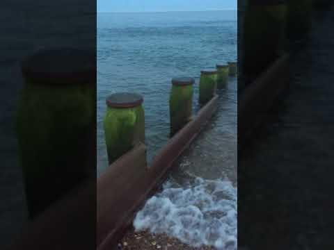 Tonystackle Mackerel Fishing At Eastbourne