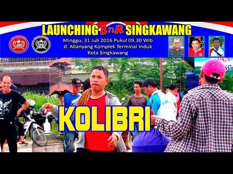 Kontes Burung Kolibri  | Launching BnR Singkawang
