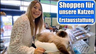 Katzen Shopping Haul 😍 Erstausstattung für neue Familienmitglieder! Haustier VLOG | Mamiseelen