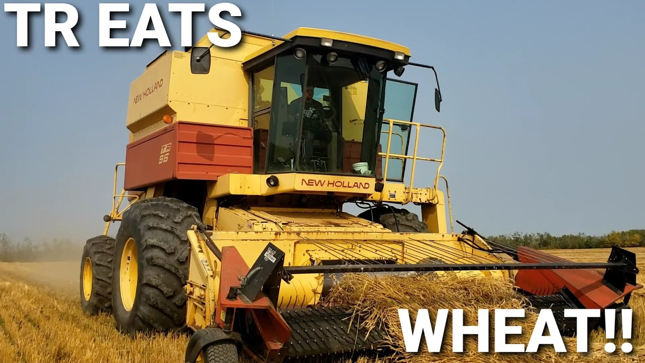 Gearing Up For Harvest!!!  Combining Wheat!