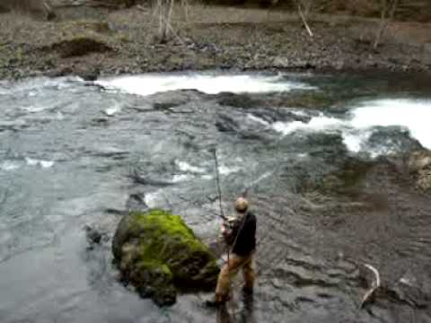 Steelhead fishing wilson river oregon youtube for Free fishing weekend oregon