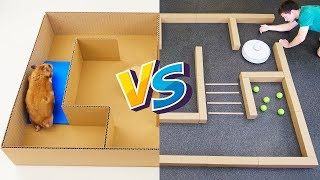 HAMSTER VS ROBOT Vacuum Cleaner in a Maze! Who is the BEST?