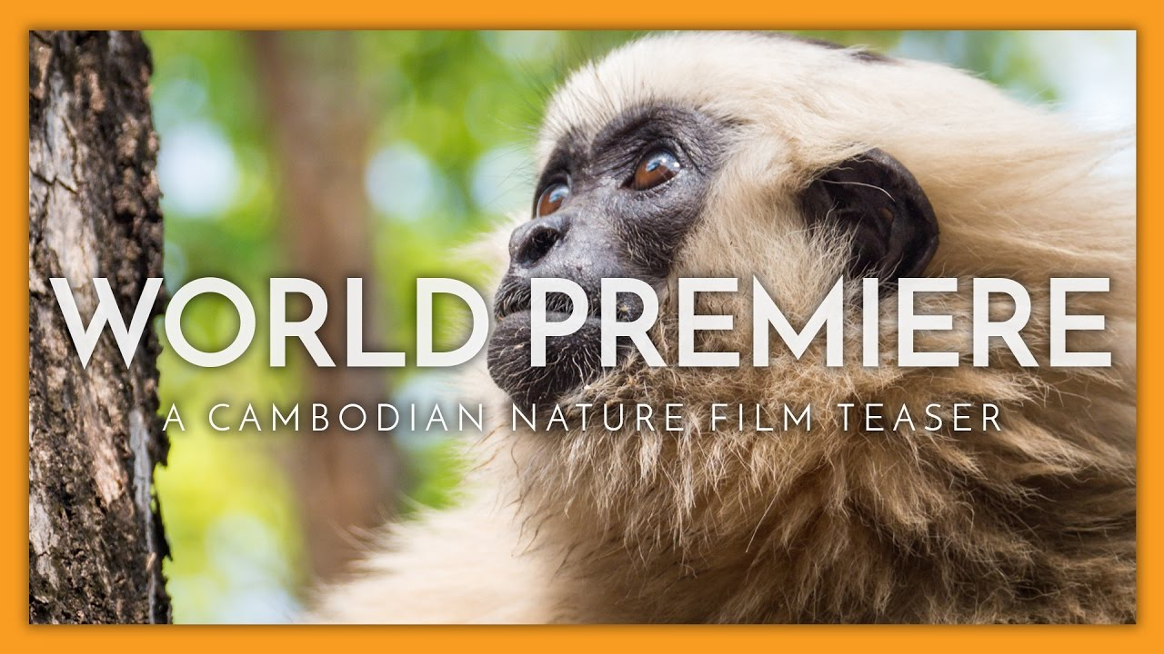 World Premiere Teaser: A Cambodian Nature Film