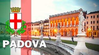 PADUA [PADOVA] - 🎓 ONE OF THE OLDEST ITALIAN UNIVERSITY TOWNS 🎓 - TRAVEL VLOG 2020