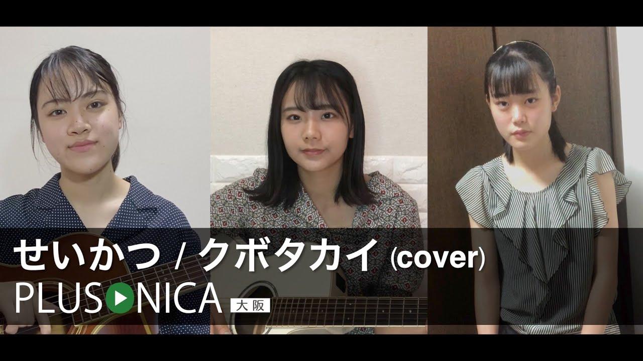 せいかつ / クボタカイ (cover)
