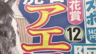 阪神競馬場 桜花賞の予想‼️