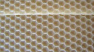BEESWAX MACHİNE-2