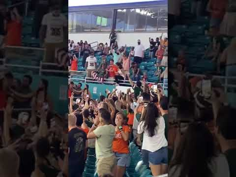 Cat-Saved-From-Terrifying-Fall-at-College-Football-Game-in-Miami