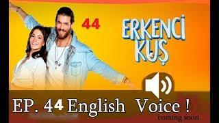 Early Bird - Erkenci Kus 44 English full hd