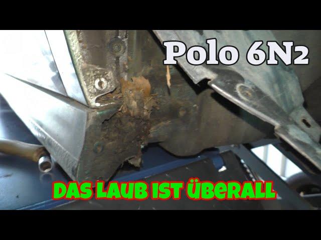 Das Laub Ist überall - Polo 6N2
