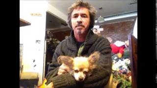 Daniel Tosh's Dog Eva On My Lap....... ....peter Caine Brooklyn Dog Training Nyc