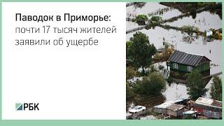 Паводок в Приморье: почти 17 тысяч жителей заявили об ущербе