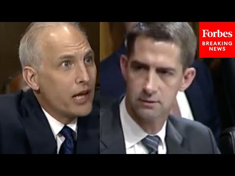 'I Started Looking At What You've Been Up To The Last 4 Years': Cotton Grills Biden J