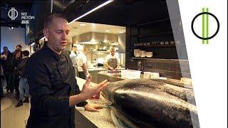 parazita tonhal szinoviális rák szarkóma