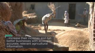 Telenor Pakistan helps over 2 million farmers to maximize their crop yields