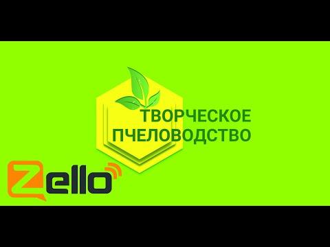 """Доказательная апитерапия. Z-рация на канале """"Творческое пчеловодство"""" 6.02.2020г."""