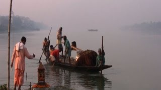 The Sacred Ganga and its dolphins: a call for protection