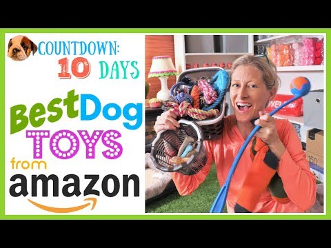 Best Dog Toys From Amazon