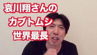 哀川翔さんのカブトムシがなんとギネスへ。詳しくはねづっちが謎かけで...