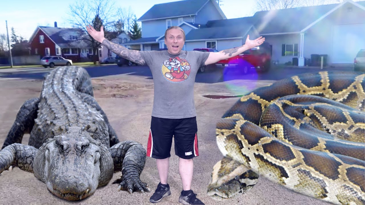 MEET MY GIANT SNAKE AND HUGE PET ALLIGATOR!! | BRIAN BARCZYK