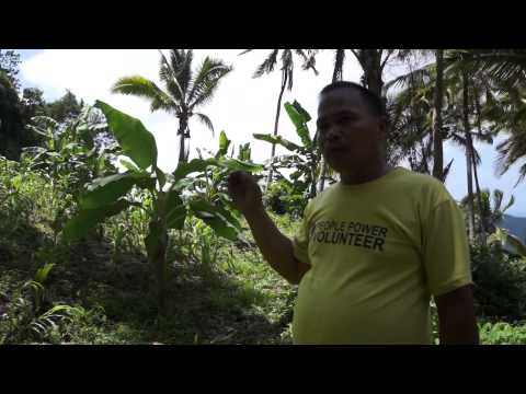 Video 6 - Sitio Colilisi Cluster, Brgy. Tagabakid, Mati City, Davao Oriental