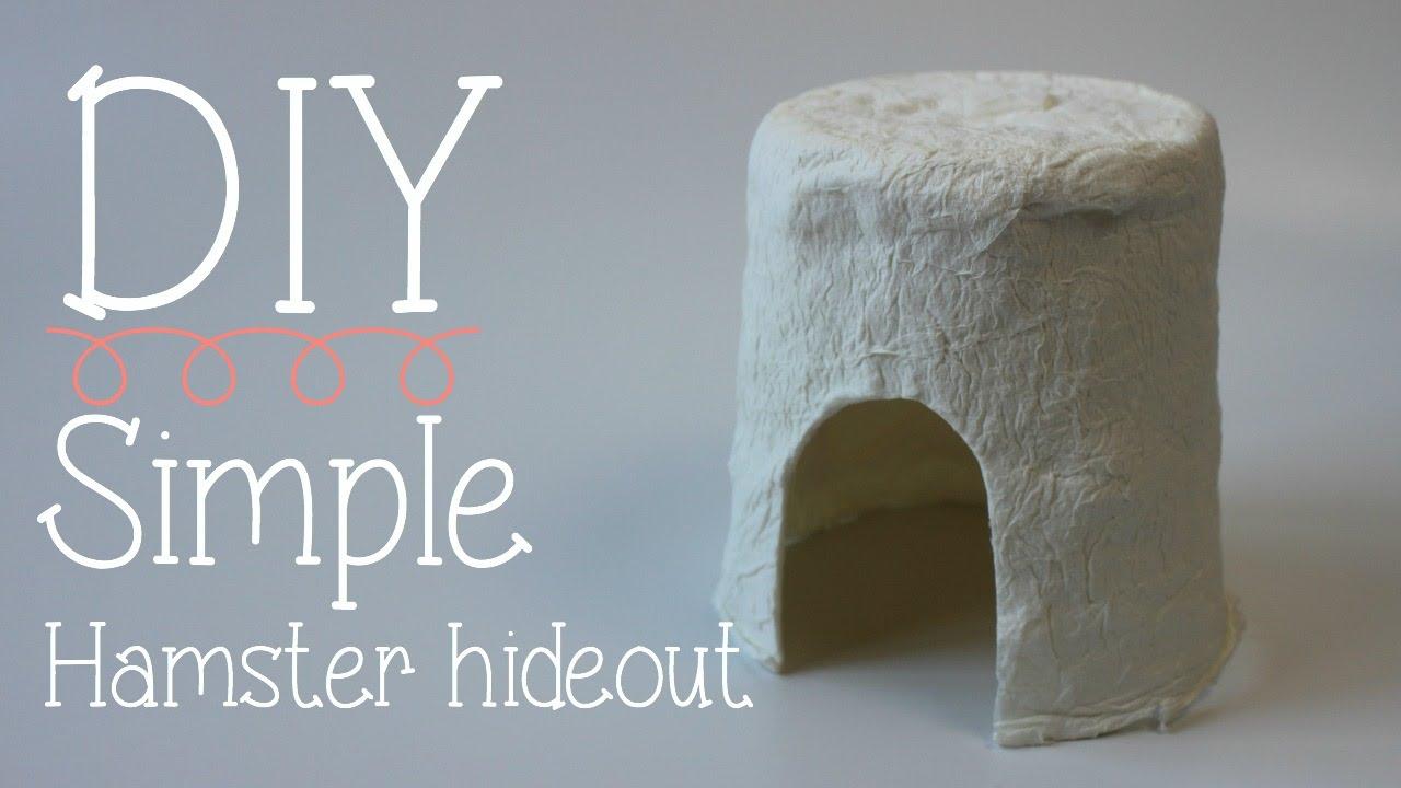Diy Simple Hamster Hideout Youtube
