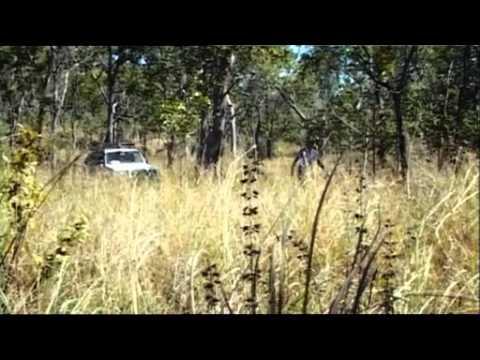 25 years of Mitsubishi Pajero 4WD - Gold Prospector Jack Langes in Australia