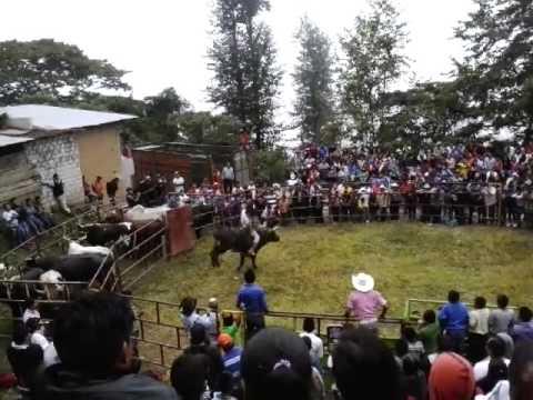 San Francisco Huehuetlán Oaxaca 2015
