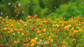 ختمة القرآن _ أمل الشقير ~ أسامة السلمان