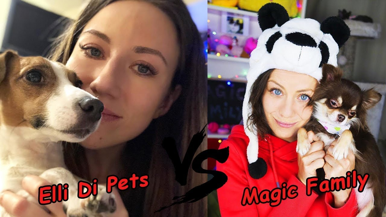 maggis vs dee Lindsayenglish206 search this site and maggie dee visits her mom with her the first conflict in this story is protagonist vs man, which is mother vs dee.
