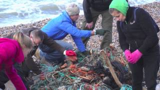 Chesil Beach Storming - The Closure (Jan.19, 2014)