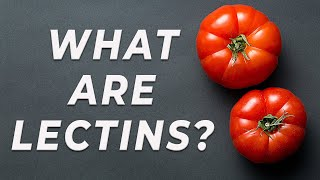 Baixar Lectins - What are they?
