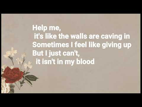 Shawn Mendes - In My Blood (Lyrics + Audio)