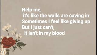 Shawn Mendes - In My Blood (Lyrics + Audio)