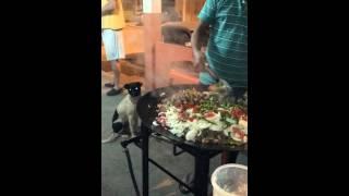 Paella Com Pinhão Em Criciúma Para Ana Maria Braga