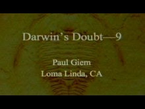 Darwin's Doubt (Part 9) 11-23-2013 by Paul Giem