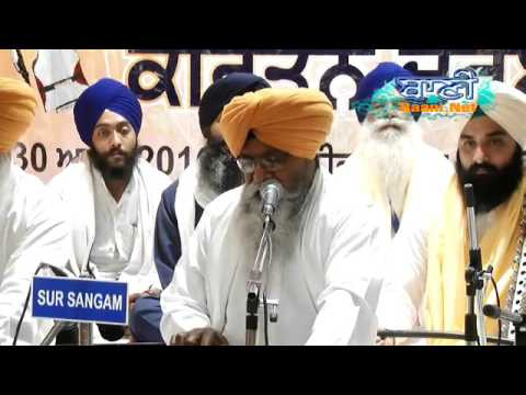 Bhai-Nirmal-Singhji-Darbar-Sahib-At-Kohat-Enclave-At-30-April-2016