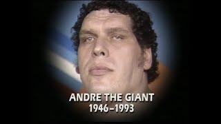 WWF Wrestling February 1993