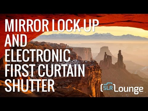 What Is Mirror Lockup and Electronic First Curtain Shutter?