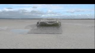 naiad fluid simulation-Breaking Wave