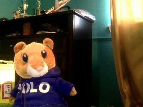 Secret agent hamster ep 2 youtube - Hamster agent secret ...
