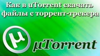 Как в uTorrent скачать файлы с торрент-трекера (2017)