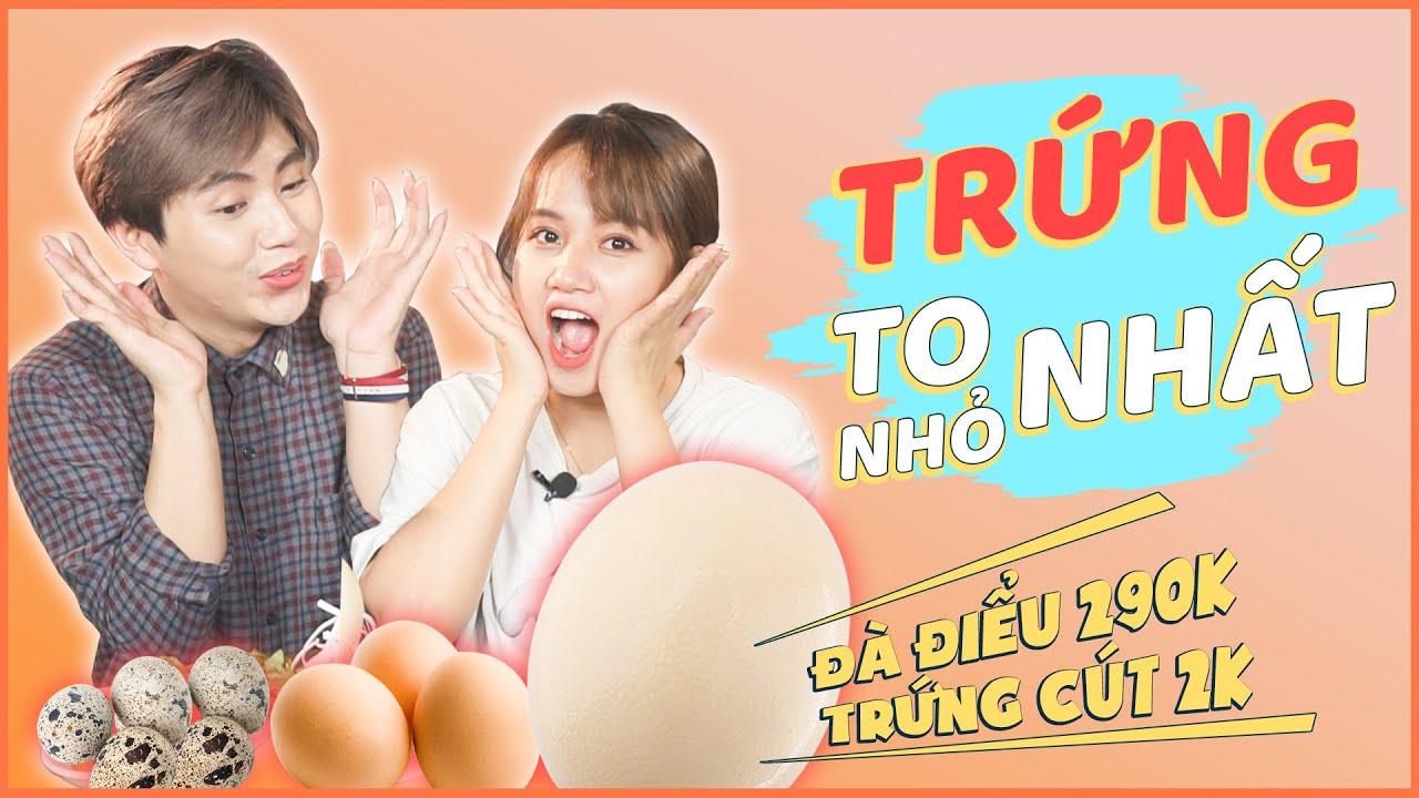 HNAG - Đại Chiến Trứng TO NHẤT tới NHỎ NHẤT, Trứng đà điểu vs Trứng cút