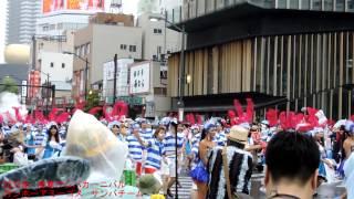 2015年 浅草サンバカーニバル 白河優菜・安藤遥・猫守ざーにゃ・羽宮千...