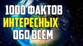 1000 ИНТЕРЕСНЫХ ФАКТОВ ОБО ВСЕМ НА СВЕТЕ
