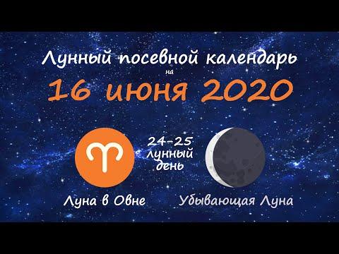 [16 июня 2020] Лунный посевной календарь огородника-садовода