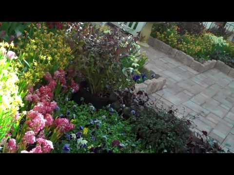Plymouth Mall & Easter Display; Chris Orser Landscaping