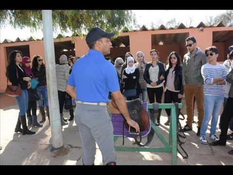 EMAA Business School Agadir