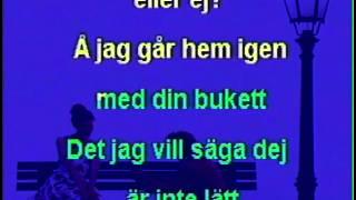 Jag vill vara din, Margareta (karaoke)