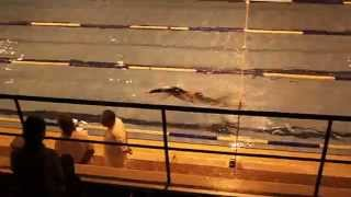 1500 м в гидрокостюме Orca Sonar